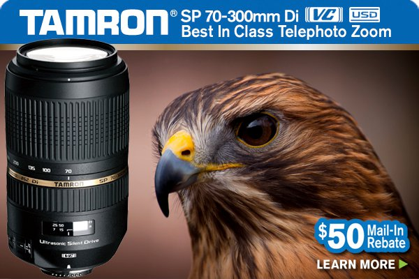 Tamron SP 70-300mm Lens - Photo by Kel Kyle, Backyard Shots Founder